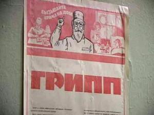 Онищенко: на Россию обрушится эпидемия свиного гриппа