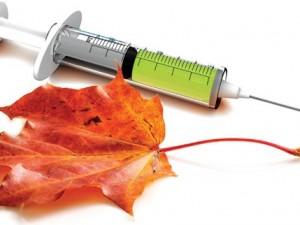 25,5 жителей Вологодчины сделали прививки против гриппа