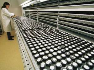 Более 300 тыс доз противогриппозной вакцины поступило в Приморье