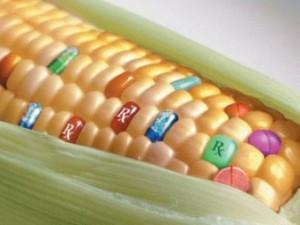 Россиян обеспечат здоровым питанием с помощью нанотехнологий