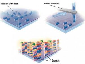 Ученые создали чипы для диагностики гриппа