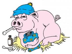Свиной грипп спас больше людей, чем убил?