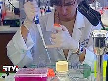 Иммунная трансплантация — новое слово в лечении свиного гриппа