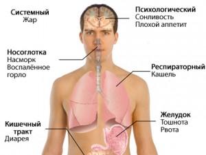 В Алтайском крае есть заболевшие свиным гриппом