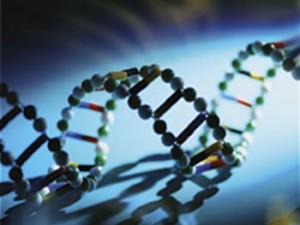 Генетики взялись за борьбу с «рыбьим гриппом»