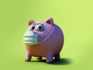 Смертельно опасная эпидемия свиного гриппа была мифом