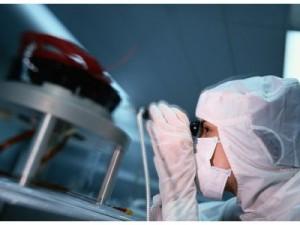Экспериментируя с возбудителем птичьего гриппа, голландские ученые создали вирус, способный убить миллионы человек