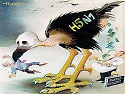 Американцы завысили летальность птичьего гриппа