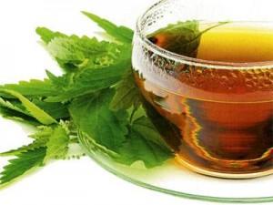 Чай от простуды из крапивы