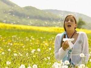 Увеличение числа аллергиков в Подмосковье
