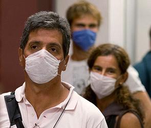 Число погибших от «свиного» гриппа может составить четверть миллиона человек