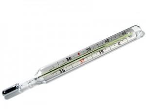 Этот замечательный прибор – термометр