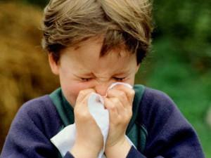 Статистика по гриппу в Мурманске