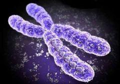 Ваши хромосомы расскажут, восприимчивы ли вы к ОРВИ