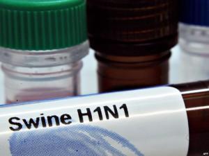 Прививка от свиного гриппа опаснее самого гриппа?