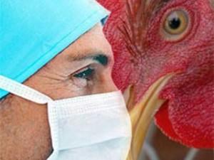 Хакасия, внимание: птичий грипп!
