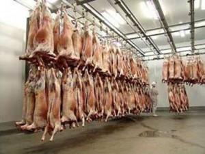 Из-за угрозы птичьего гриппа Армения ввела запрет на импорт ряда товаров из Италии