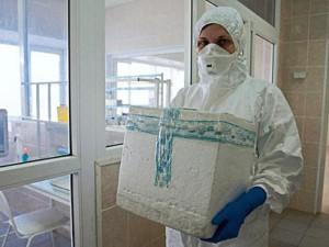 Распространившийся по Италии птичий грипп не угрожает Азербайджану