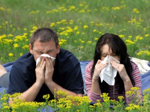 Аллергический ринит – сезонная болезнь или диагноз на всю жизнь