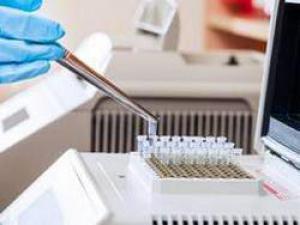 Устойчивость к антибиотикам стала глобальной угрозой