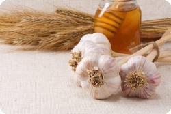 Мед и чеснок – лучшая альтернатива антибиотикам