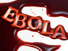 Лихорадка Эбола будет свирепствовать еще минимум полгода
