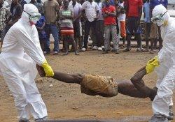 Эбола: лечение больных с помощью переливания крови выживших