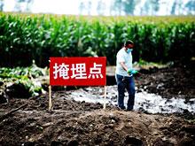 Опаснейший птичий грипп проявился в Китае