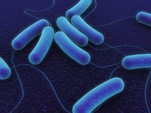 Новые антибиотики будут делать из старых препаратов