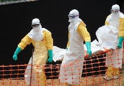 Эпидемия Эбола: 10 000 новых случаев болезни каждую неделю – новый прогноз