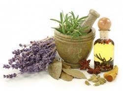 Душистые травы: аромат, прогоняющий простуды
