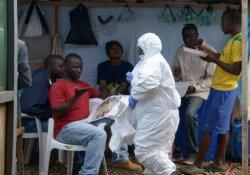 Эпидемия лихорадки Эбола: 121 смерть за 1 день