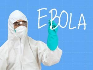 Ученые: история вируса Эбола насчитывает 20 миллионов лет