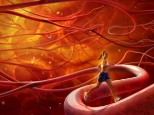Ламинария против атеросклероза