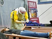 Скорость распространения эпидемии Эбола даже не думает снижаться