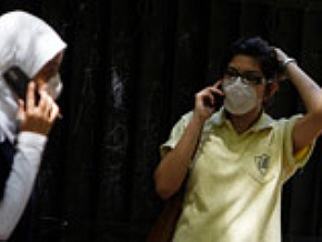 Количество жертв птичьего гриппа в Египте достигло семи человек