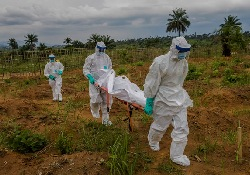 Тела умерших от лихорадки Эбола — источники вируса на протяжении недели