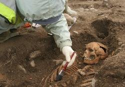 Раскопки древних могил помогут открыть тайны возбудителя холеры