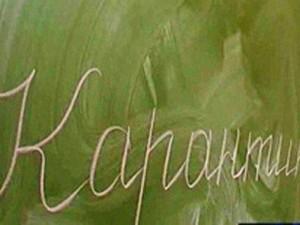 В Новгородской области на карантине по гриппу остались два класса в Любытино