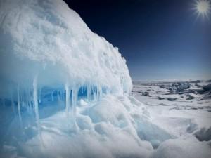 Глобальное потепление спровоцирует эпидемии