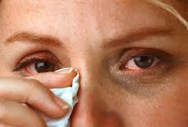 Должна ли вас тревожить аллергия на пчелиную пыльцу