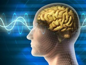 Как заставить свой мозг работать