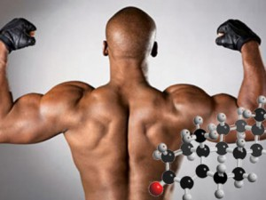 Тестостерон — все дело в норме