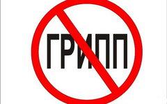 Онищенко назвал главных врагов вакцинации от гриппа