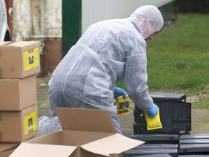Новая напасть: во Франции нашли птичий грипп