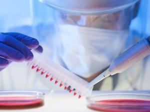 Свиной грипп атакует Новый Уренгой – уже 14 заболевших