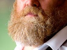 Борода оказалась неожиданным источником антибиотиков