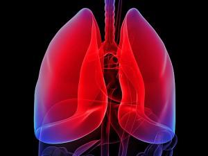 Курильщиков при бронхите лечат антибиотиками