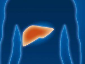 Выздоровление после гепатита В не уменьшает риск развития рака печени