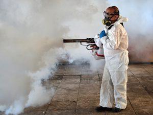 Лихорадка Зика исчезнет в ближайшие годы